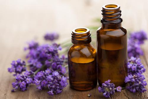lavendar-oil